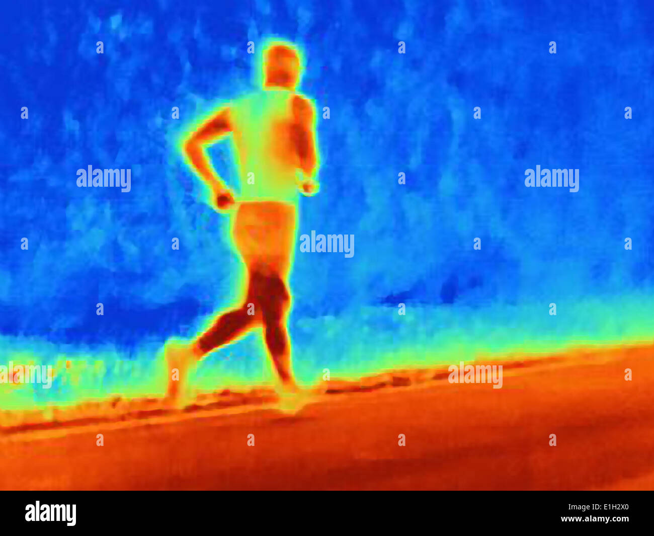 Rear view thermal photograph of young male athlete running. The image shows the heat of the muscles - Stock Image