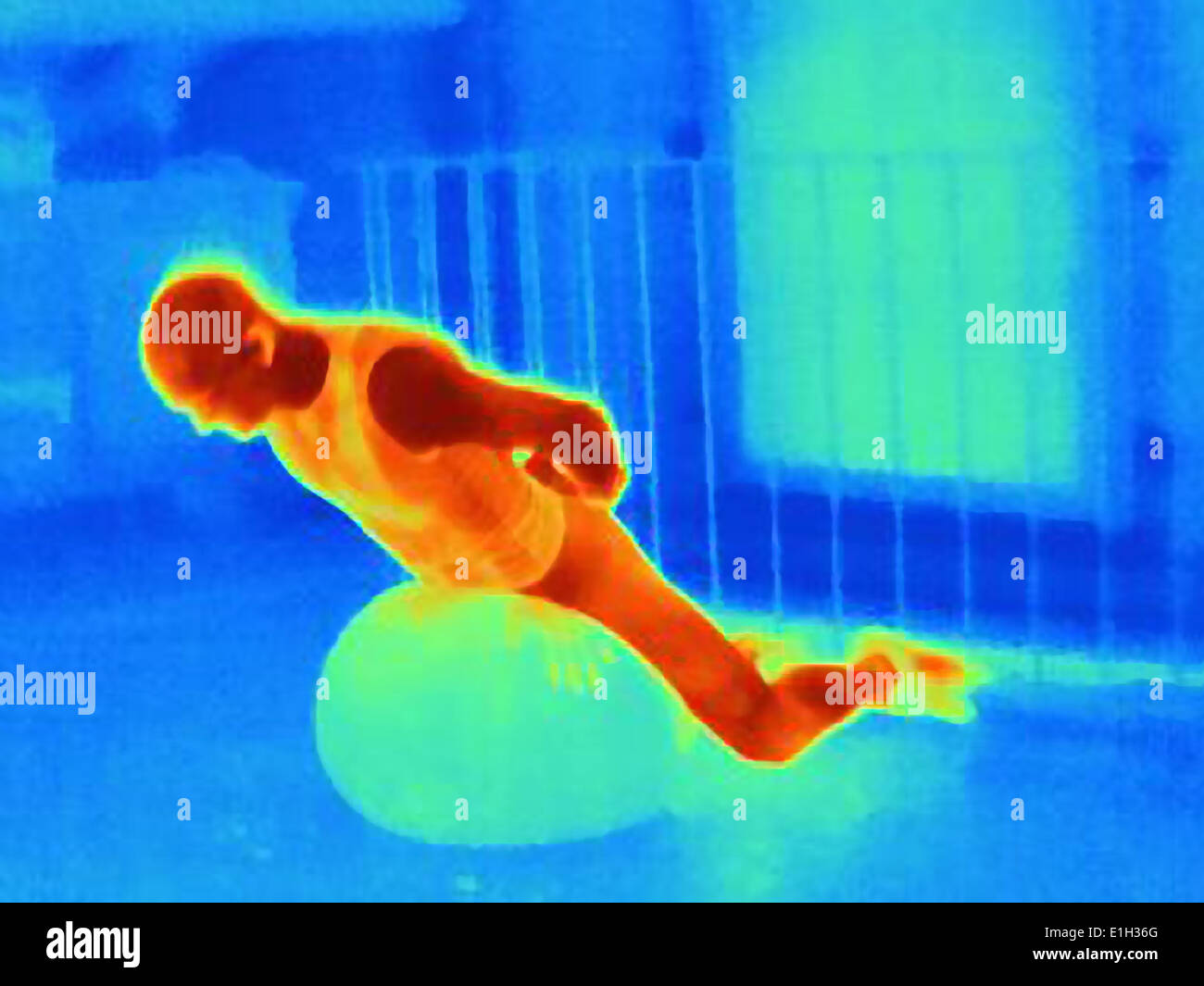 Thermal image of young male athlete training with exercise ball. The image shows the heat produced by the muscles - Stock Image