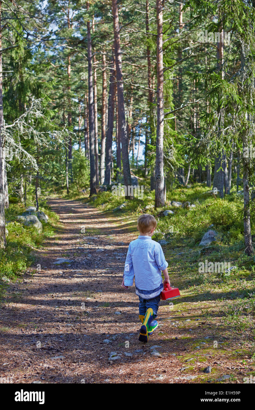 Young boy wandering along forest path - Stock Image