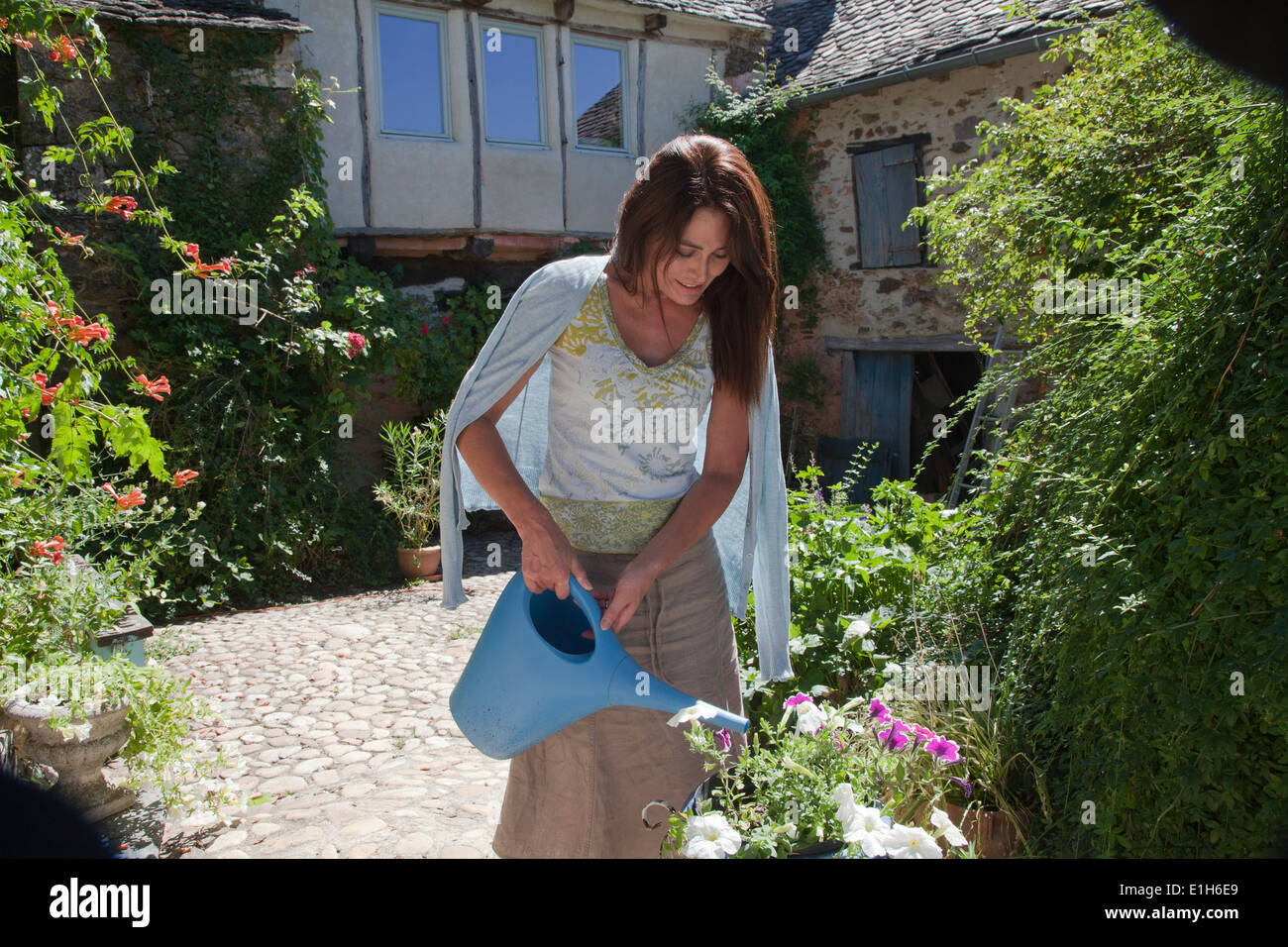Mature adult woman watering garden plants - Stock Image
