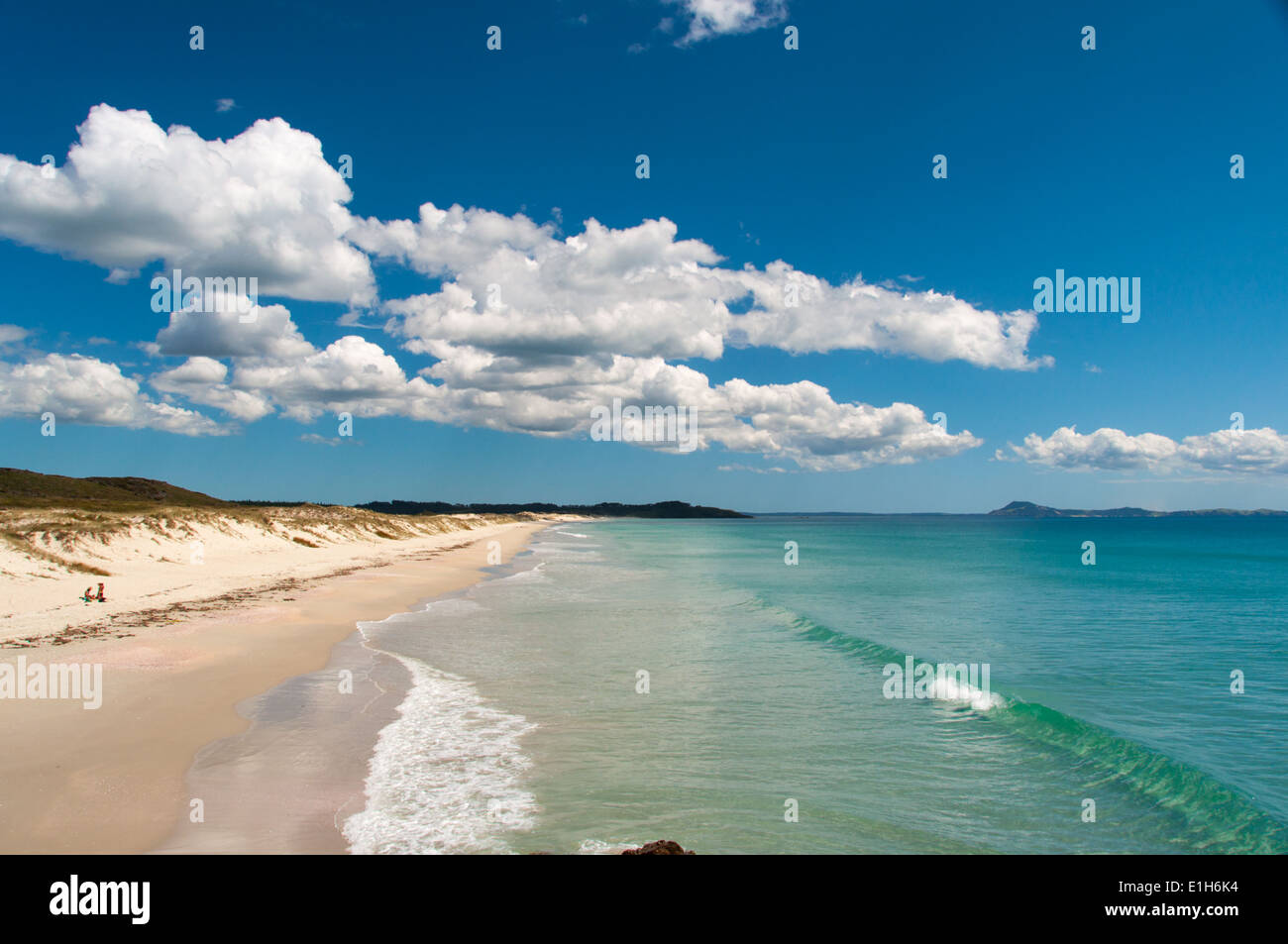 Karikari beach, in the Far North, North Island New Zealand - Stock Image