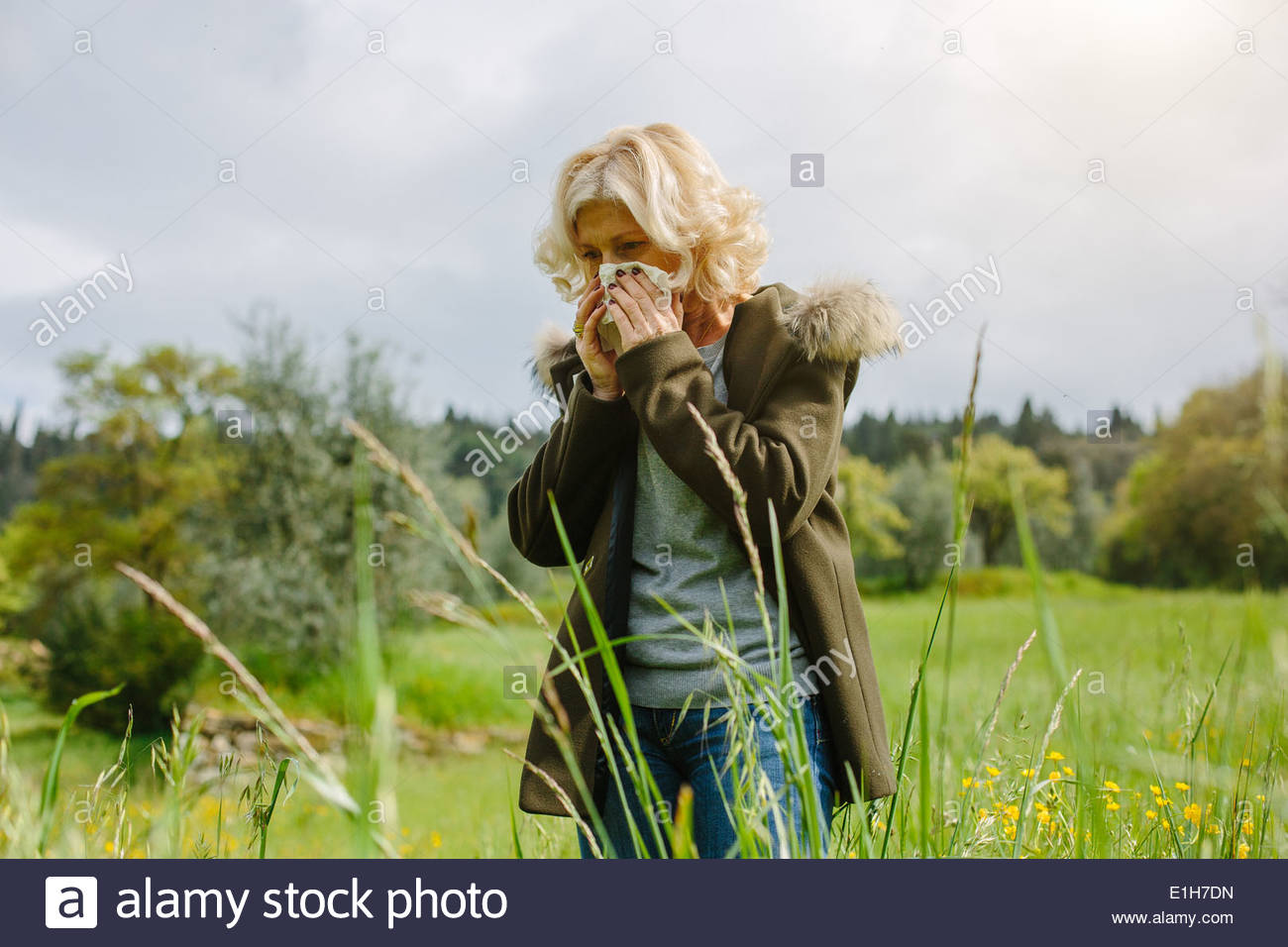 Mature woman blowing her nose whilst out in fields - Stock Image