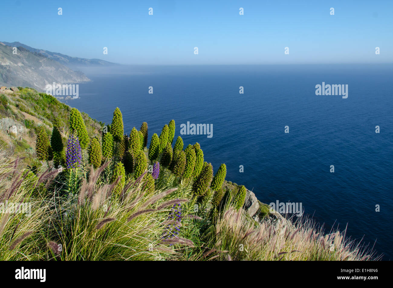 Big Sur California USA - Stock Image
