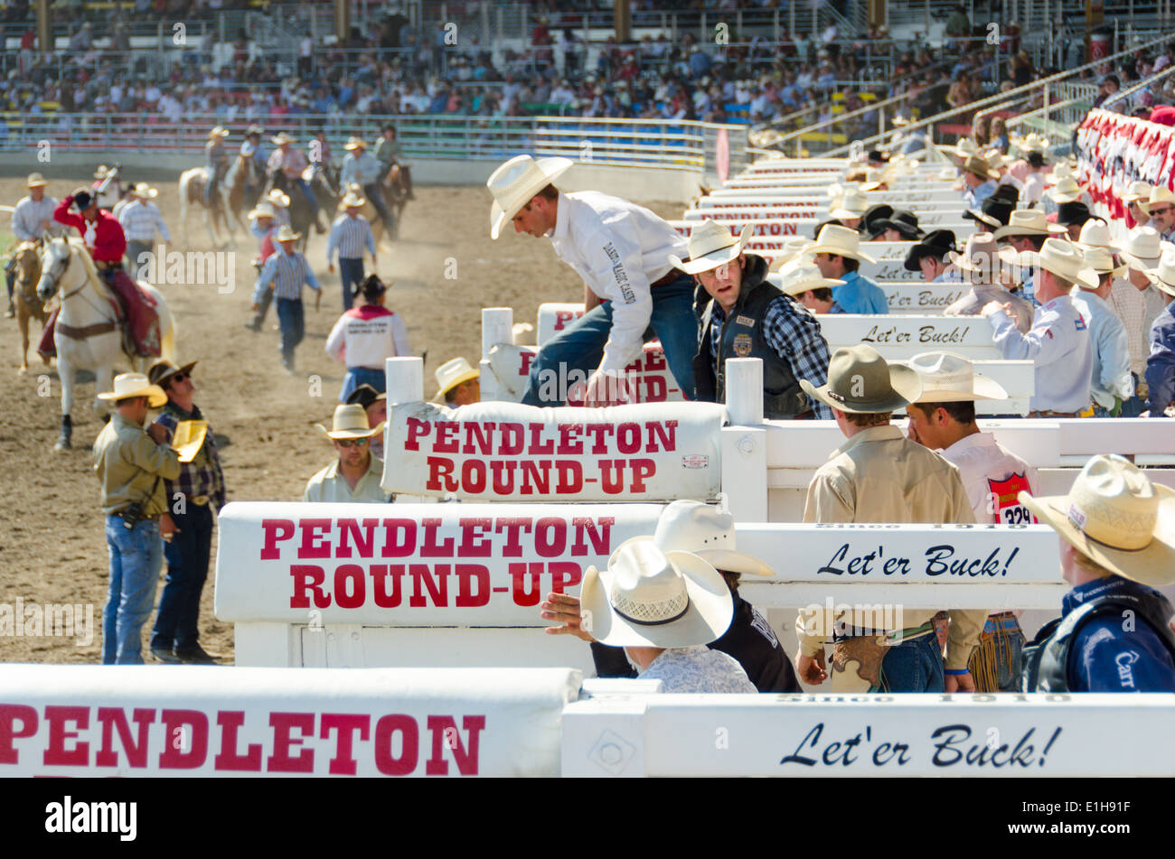 Cowboys Pendleton Roundup - Stock Image