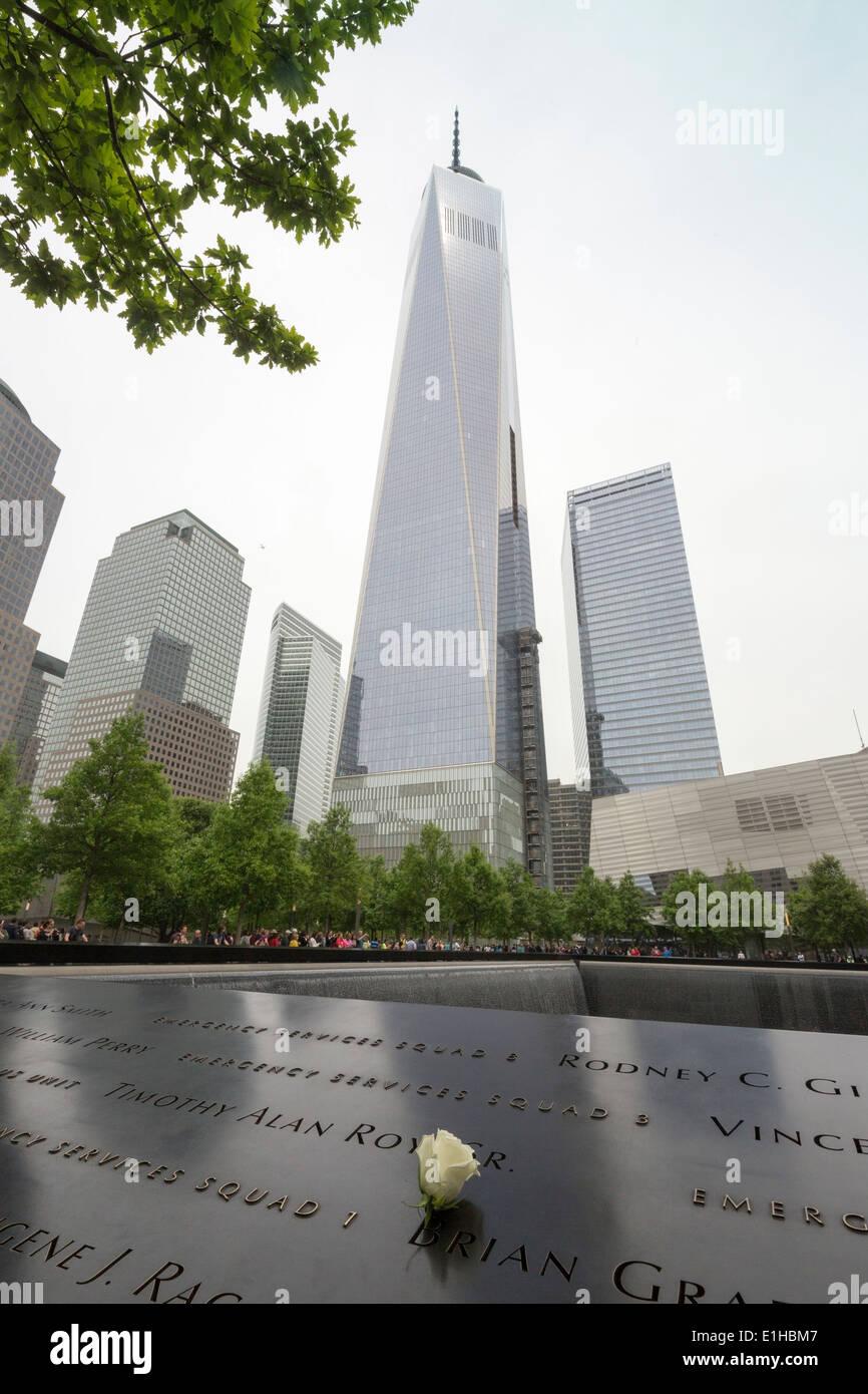 commemorative white rose on name at The National September 11 Memorial, New York City, Manhattan, USA - Stock Image