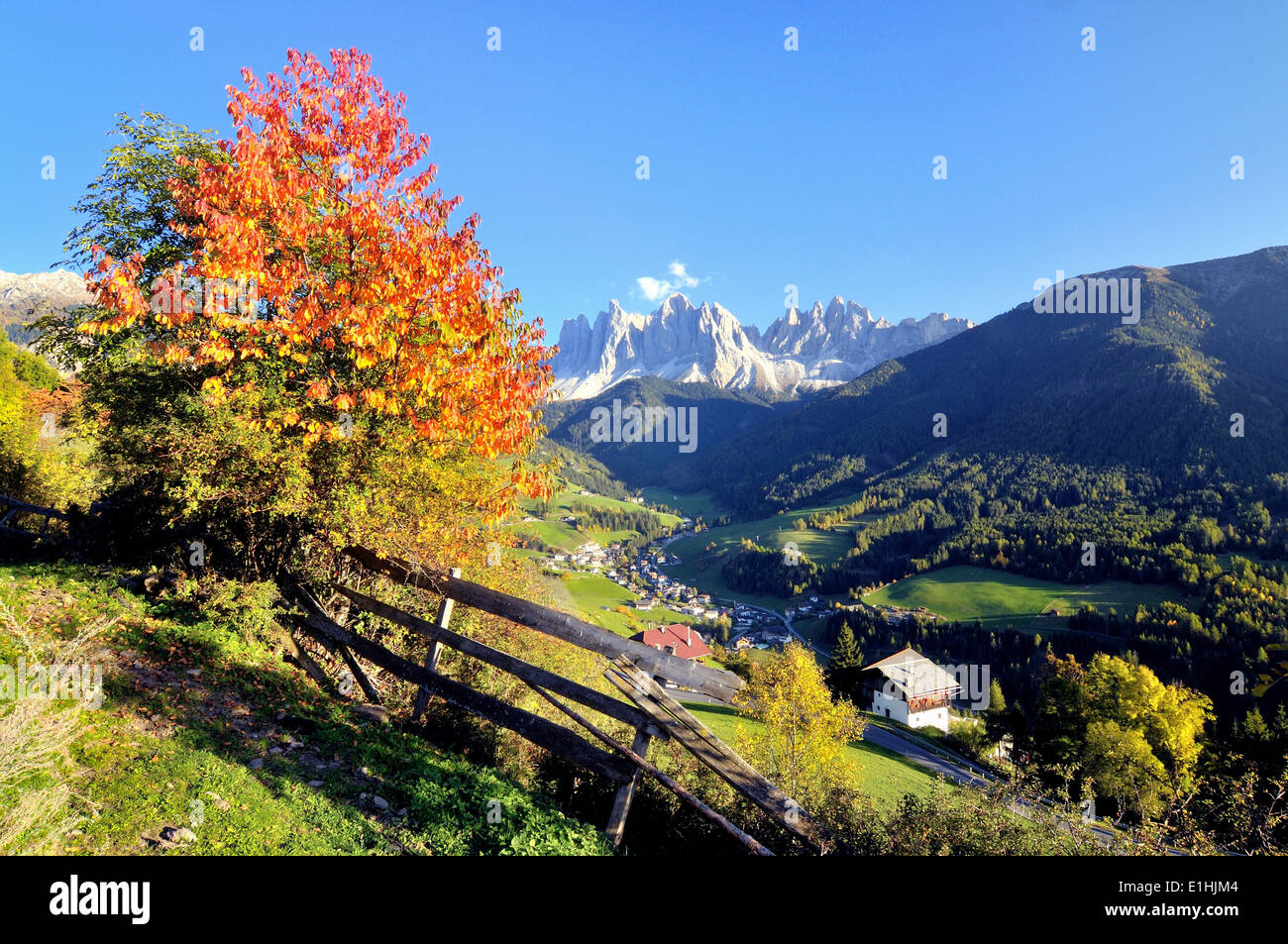 Autumn in Val di Funes valley with the Geisler Peaks in the Dolomites, Val di Funes, Bolzano province, Trentino Stock Photo