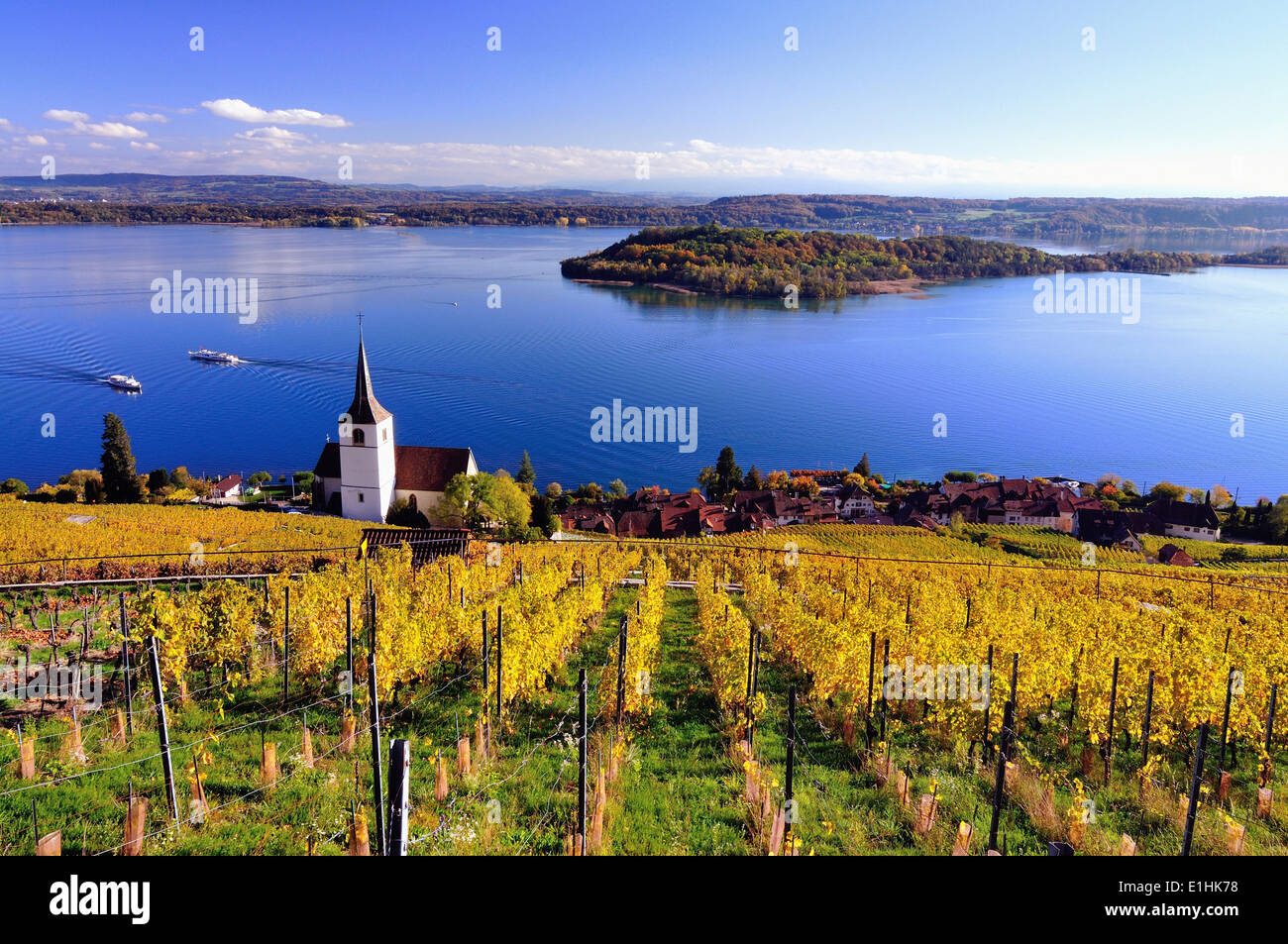 Lake Biel and vineyards in autumn, St. Peter's Island at the back, Ligerz, Canton of Bern, Switzerland - Stock Image