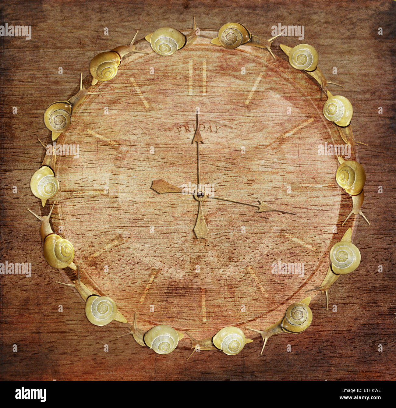 Slow Time. Retro Watch with Snails on Wood. Art Concept Stock Photo