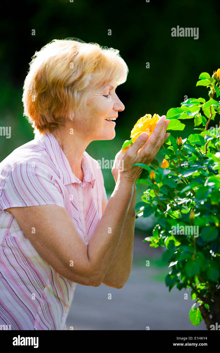 Sentimentality. Mature Pretty Old Lady Smelling Yellow Flower - Stock Image