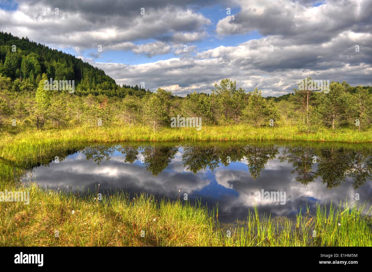 Mountain lake, Sf. Ana lake, Romania - Stock Image