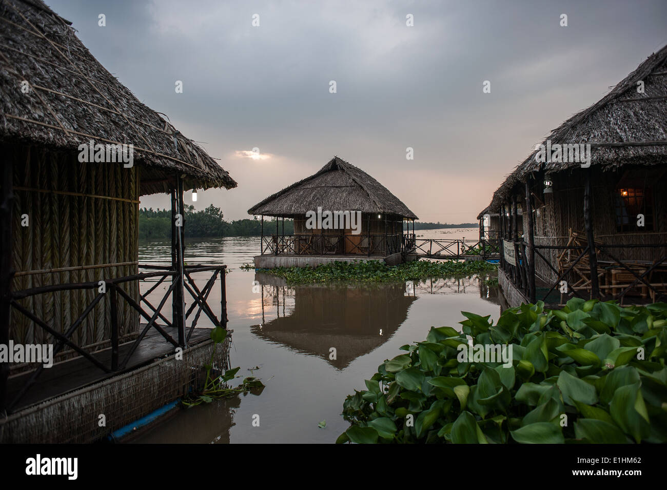 Houses at Mekong Delta in Vietnam - Stock Image