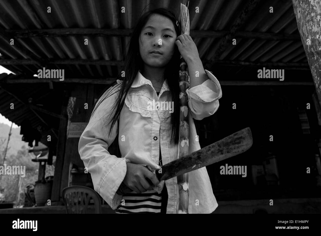 A girl poses while cutting bamboo in Sapa, Vietnam - Stock Image