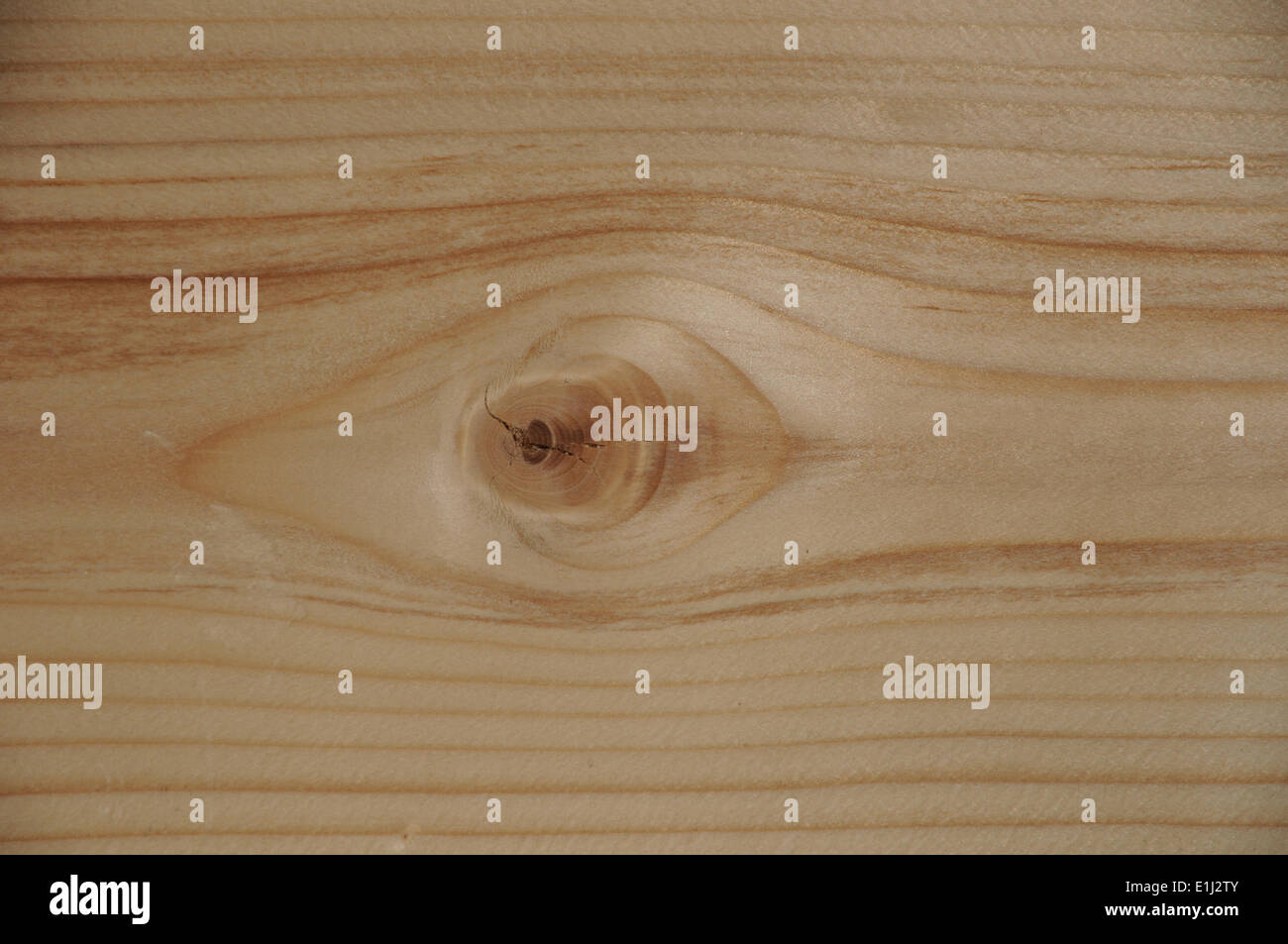 Board - Stock Image