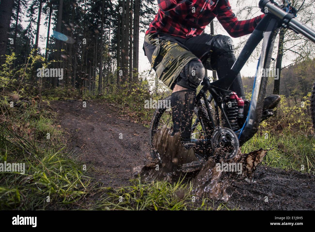 Germany, Lower Saxony, Deister, Bike Freeride in forest - Stock Image