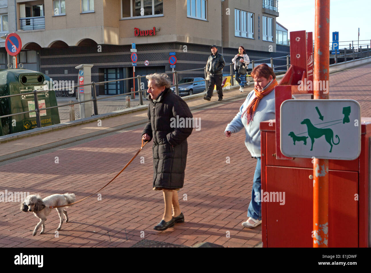 walking the dog, zeebrugge, Belgium - Stock Image