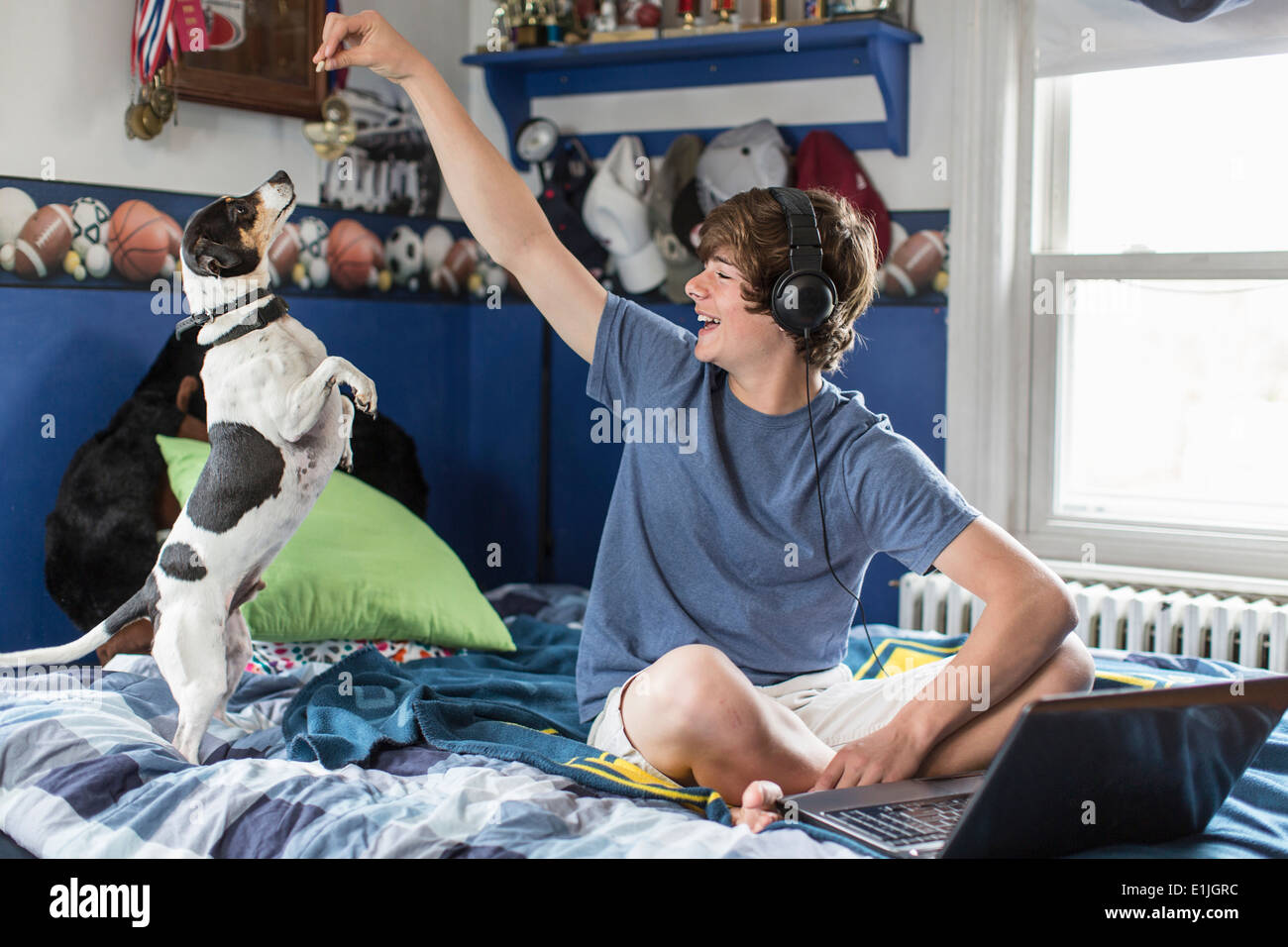 Teenage boy sitting on bed with laptop computer, playing with dog - Stock Image
