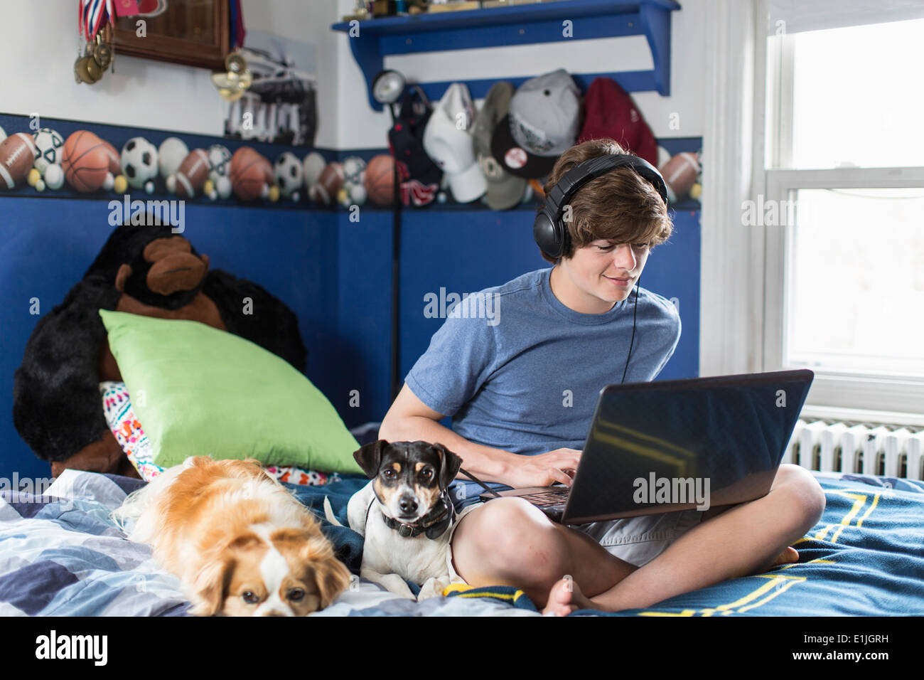 Teenage boy sitting on bed using laptop computer, with dogs - Stock Image