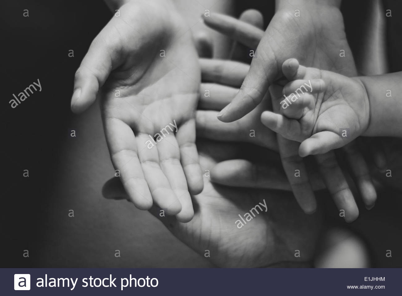 Black and white image of parents and female toddlers hands - Stock Image
