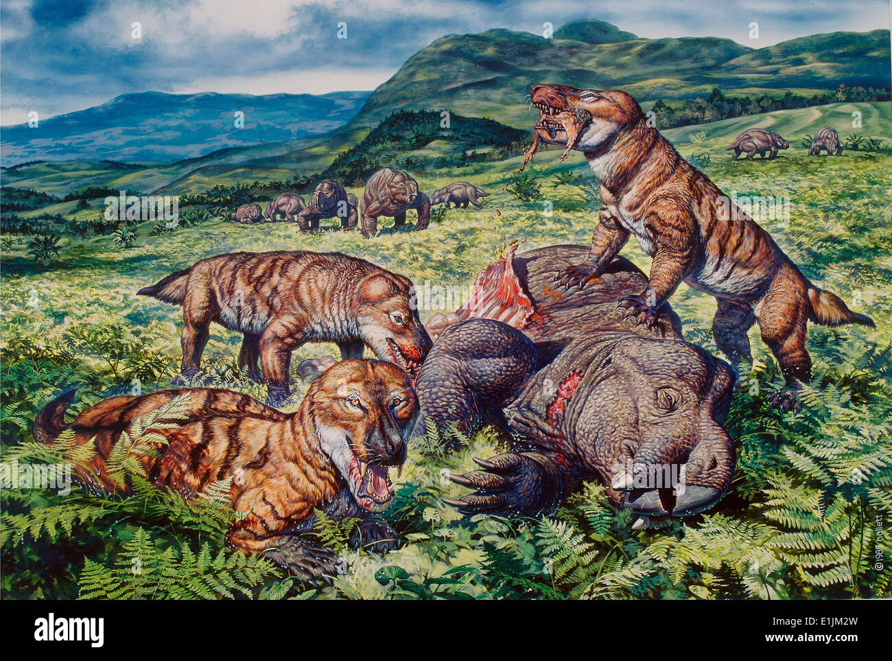 A group of carnivorous Cynognathus prey on a Placerias dicynodont. - Stock Image