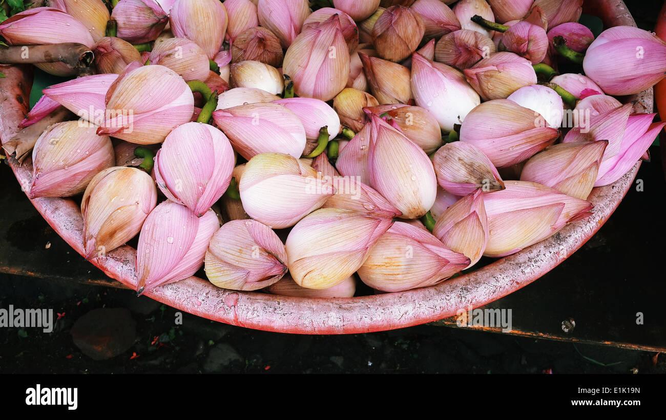 Lotus for sale,Indian market, flowermakrket,kerala,India - Stock Image