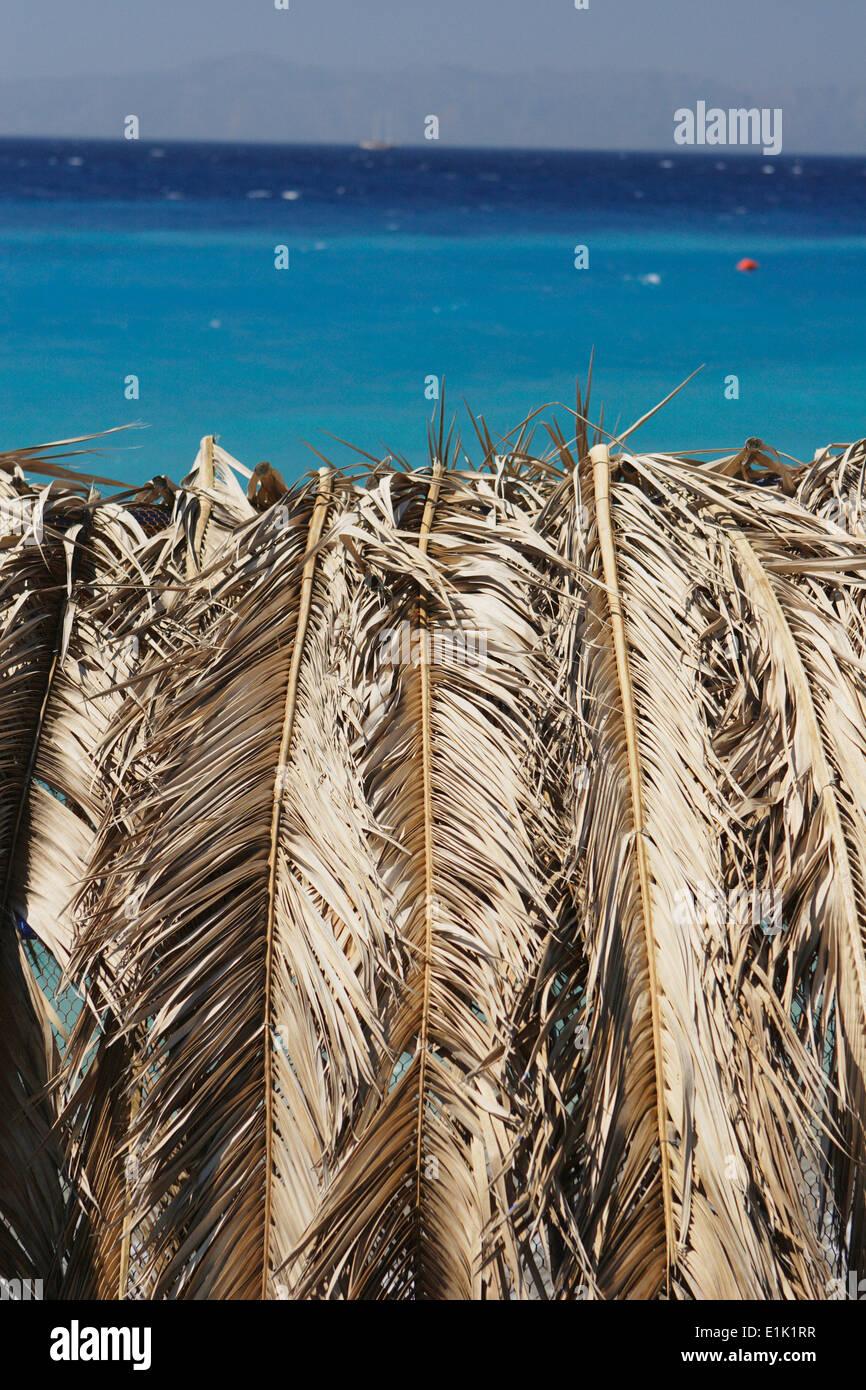 Straw umbrella detail, Rhodes Island Rhodes town ,Greece - West Beach - Stock Image