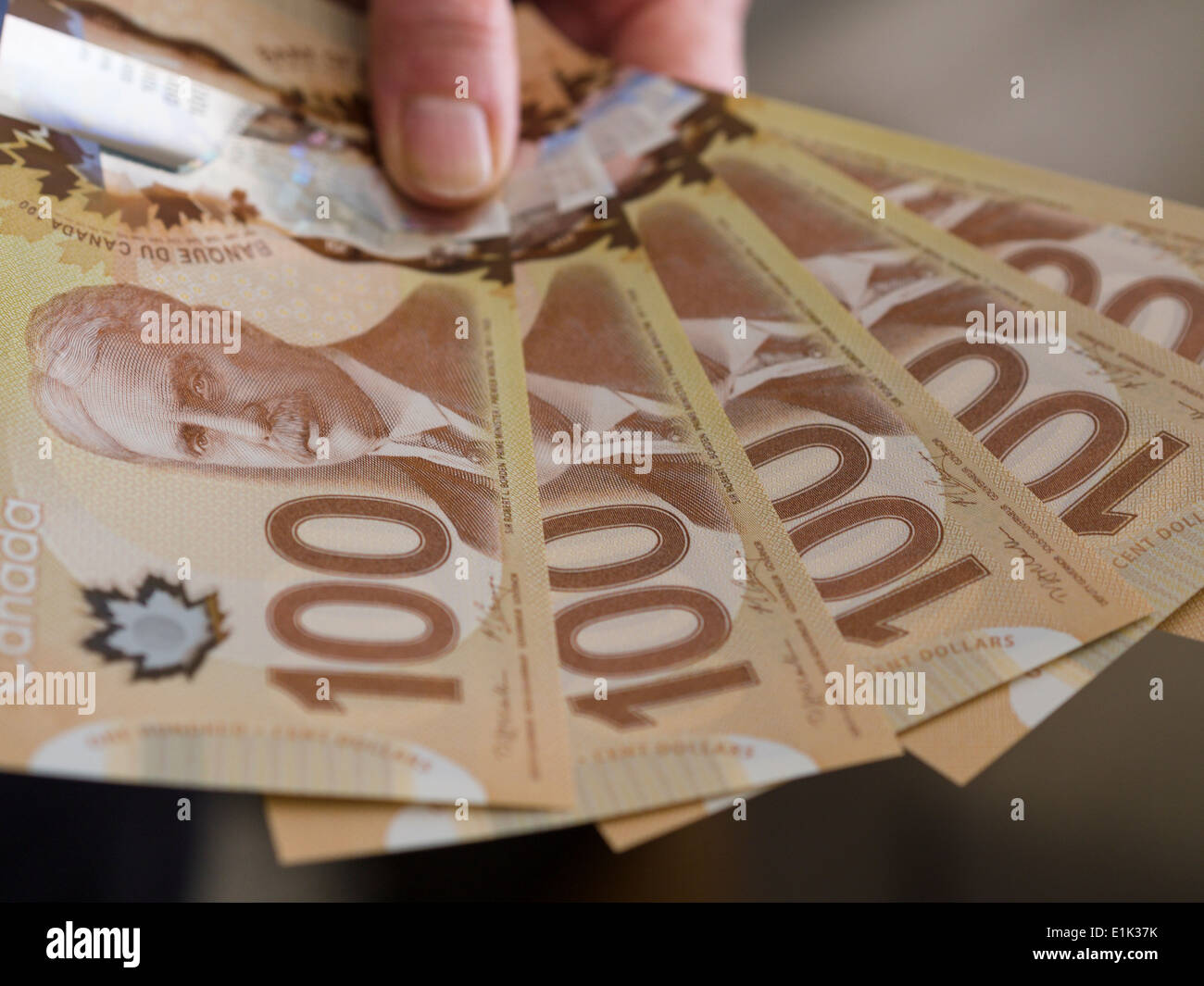 Show Me the Money: 5 Canadian Hundred dollar bills. Five Canadian hundred dollar bills spread out like a hand of cards. - Stock Image