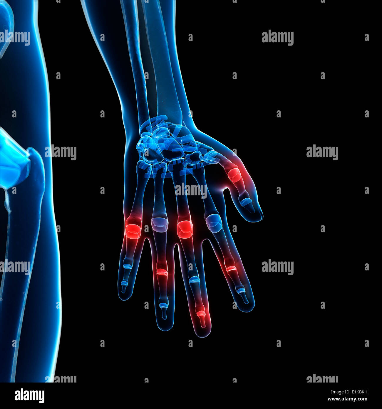 Human finger joints computer artwork. - Stock Image