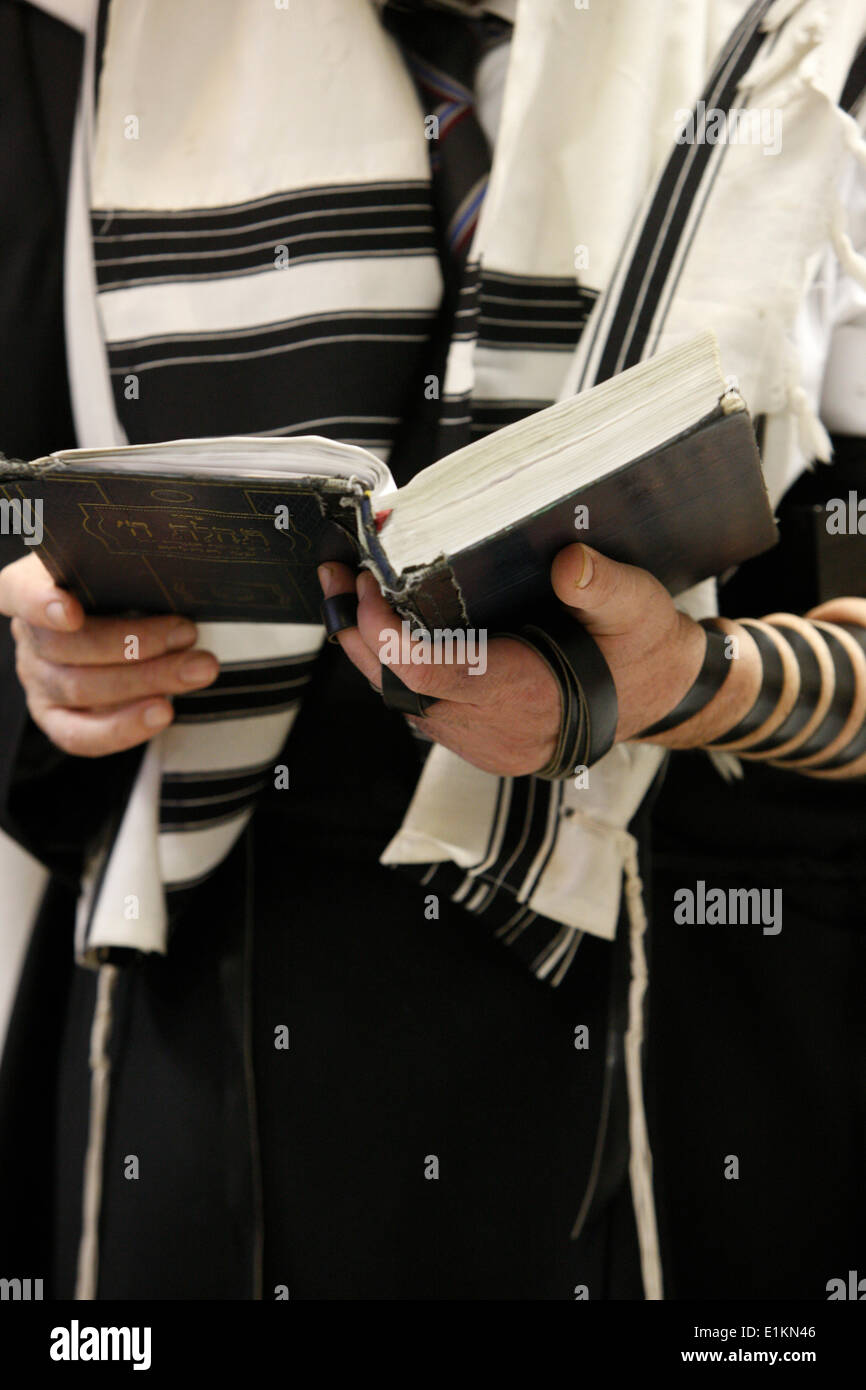Orthodox Jew holding a prayer book and wearing a taleth (prayer shawl) - Stock Image