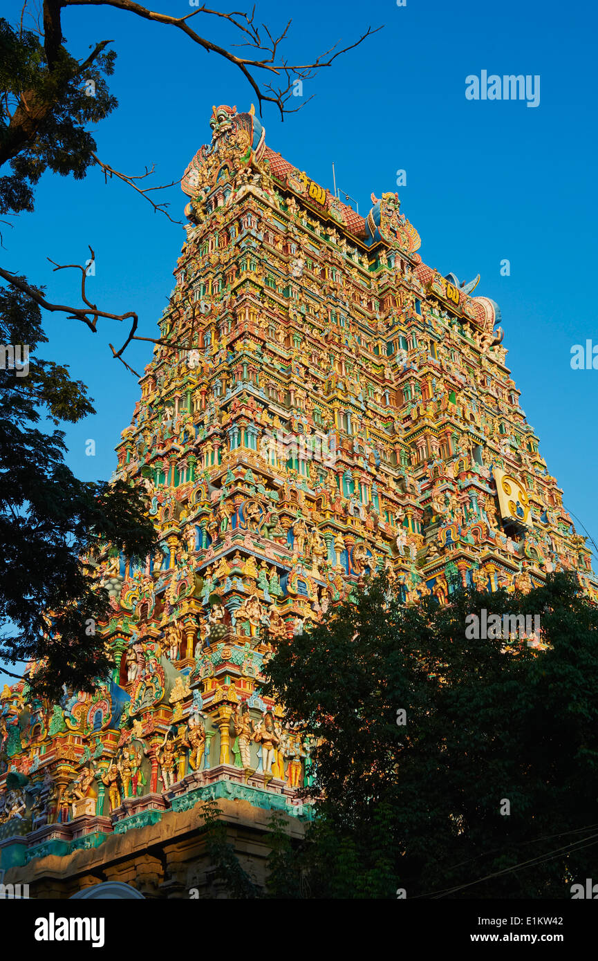 India, Tamil Nadu, Madurai, Sri Meenakshi temple Stock Photo