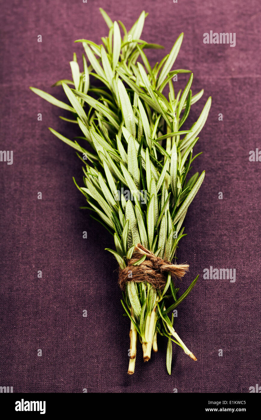 Fresh rosemary on purple napkin - Stock Image