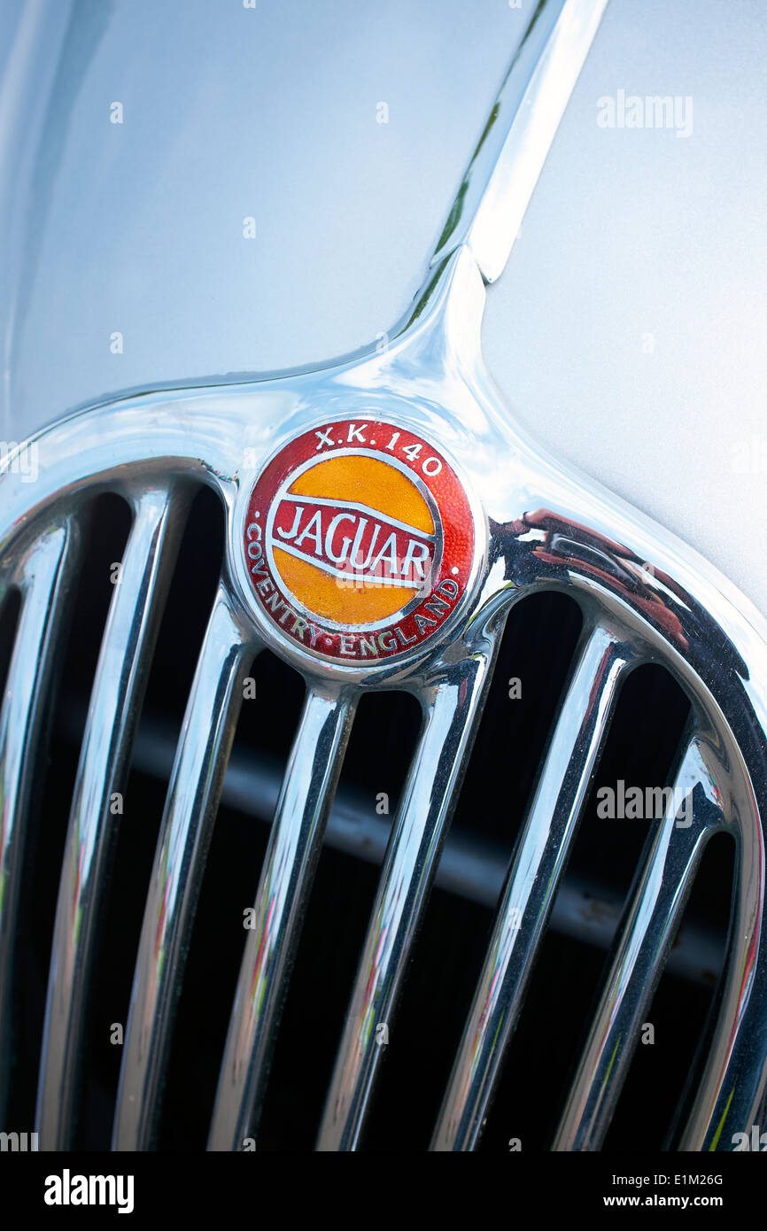 Jaguar XK 1450 grill and badge. - Stock Image