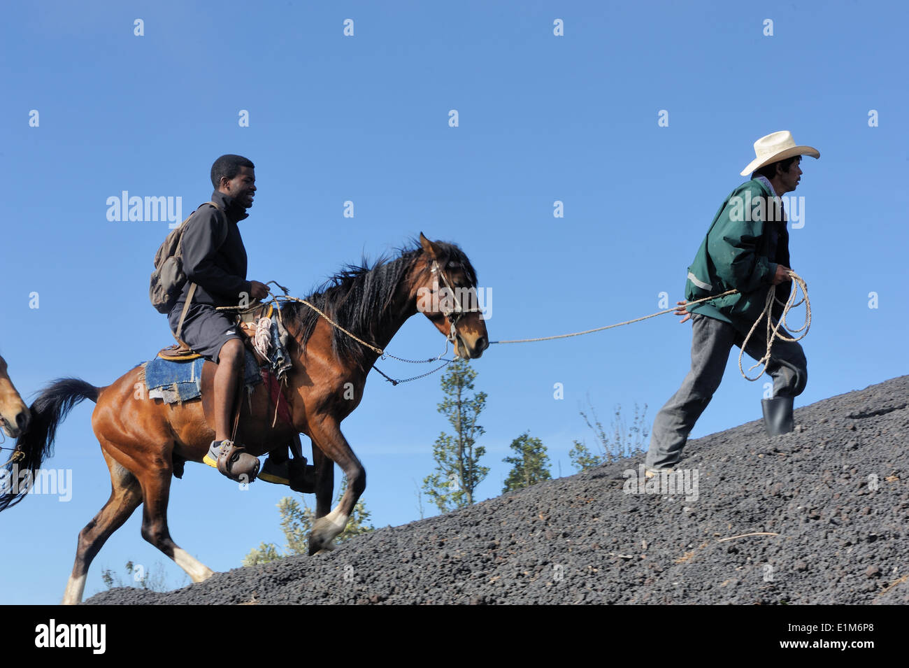 A tourist on horseback is led up the black lava slopes of the active  Volcan de Pacaya, Cono Mackenney. Guatemala - Stock Image