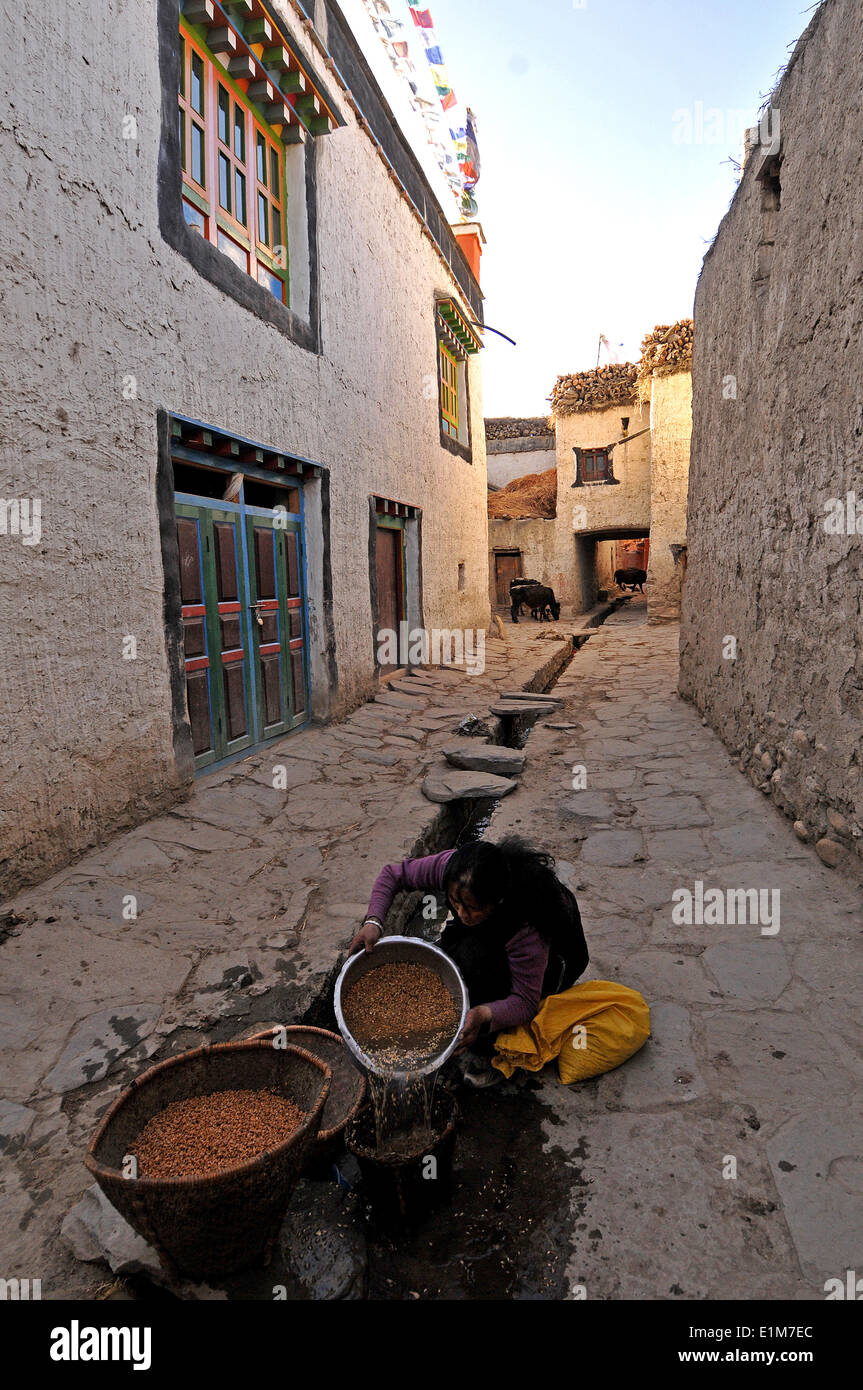 Water supply in Lo-Manthang - Stock Image