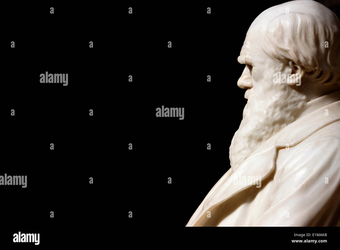 Statue of Darwin in the Natural History Museum, London - Stock Image