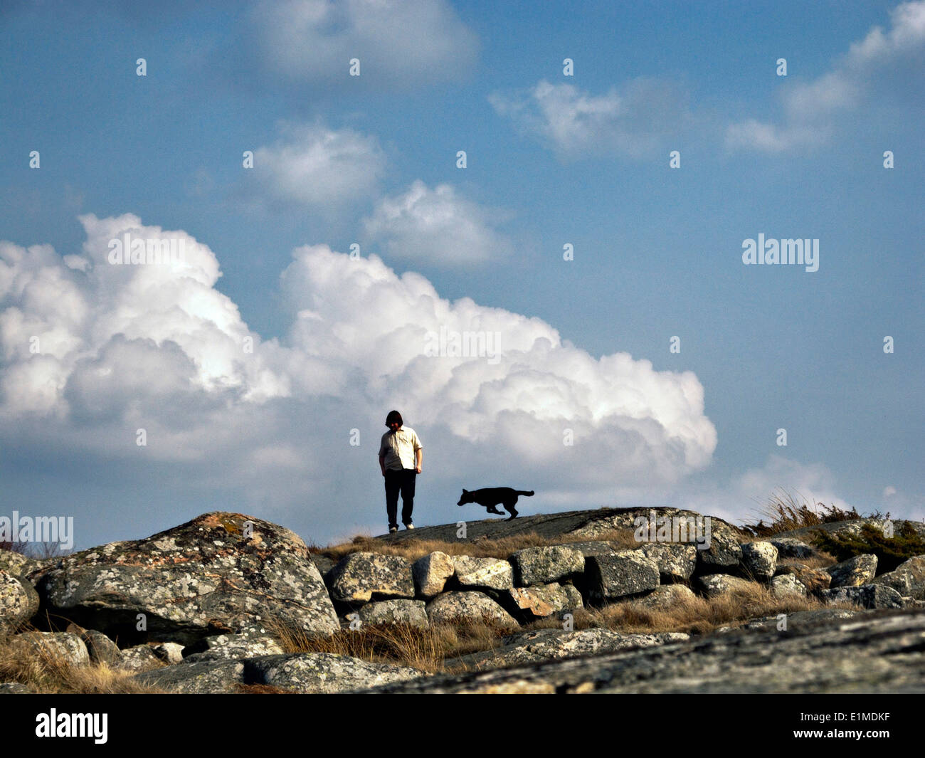"""Torbjörn """"Ebbot"""" Lundberg from the Soundtrack of our lives with my dog Fanny walking the cliffs in Särö, Sweden. - Stock Image"""