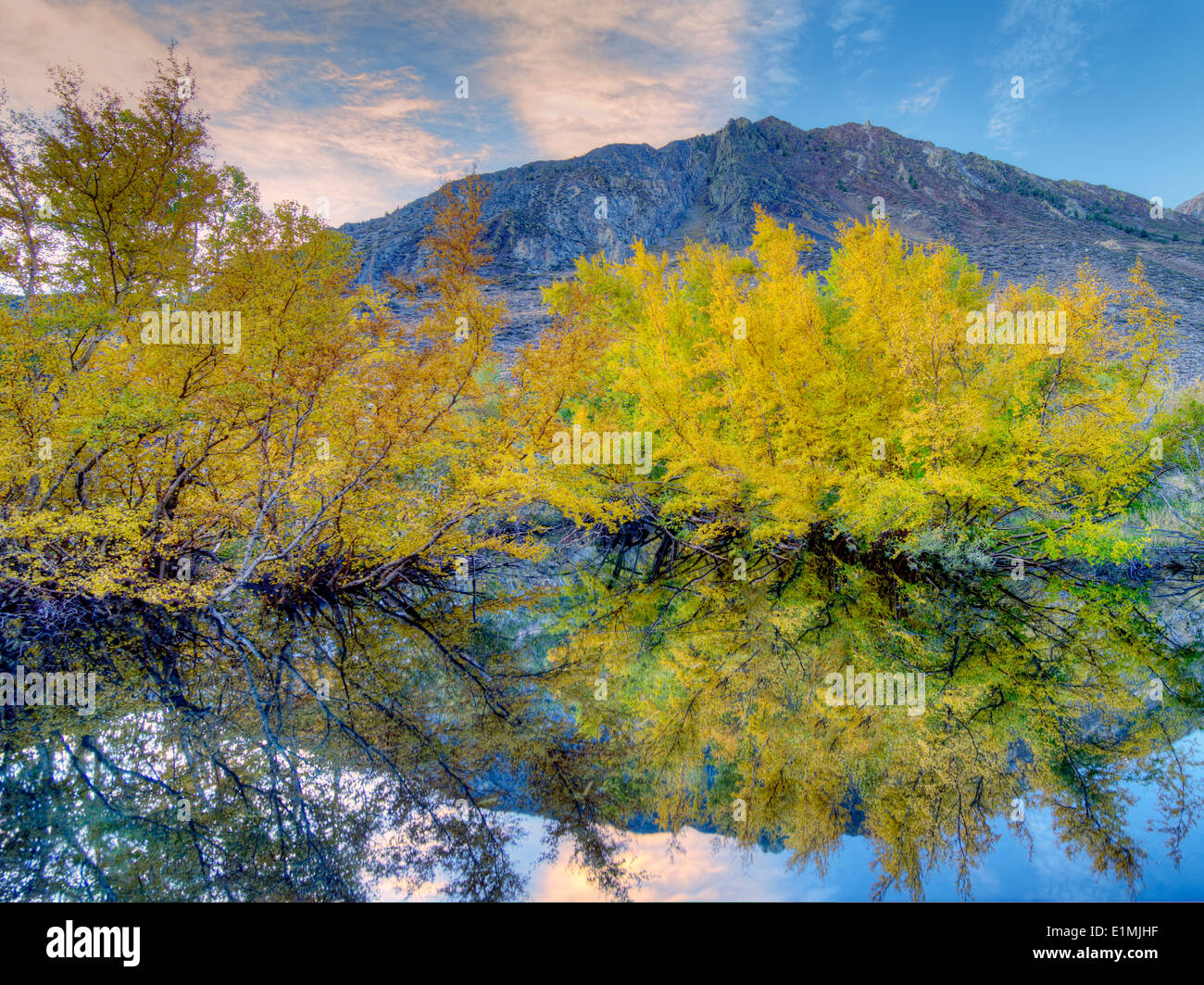 Beaver pond and fall color on McGee Creek. Eastern Sierra Nevada Mountains. California - Stock Image