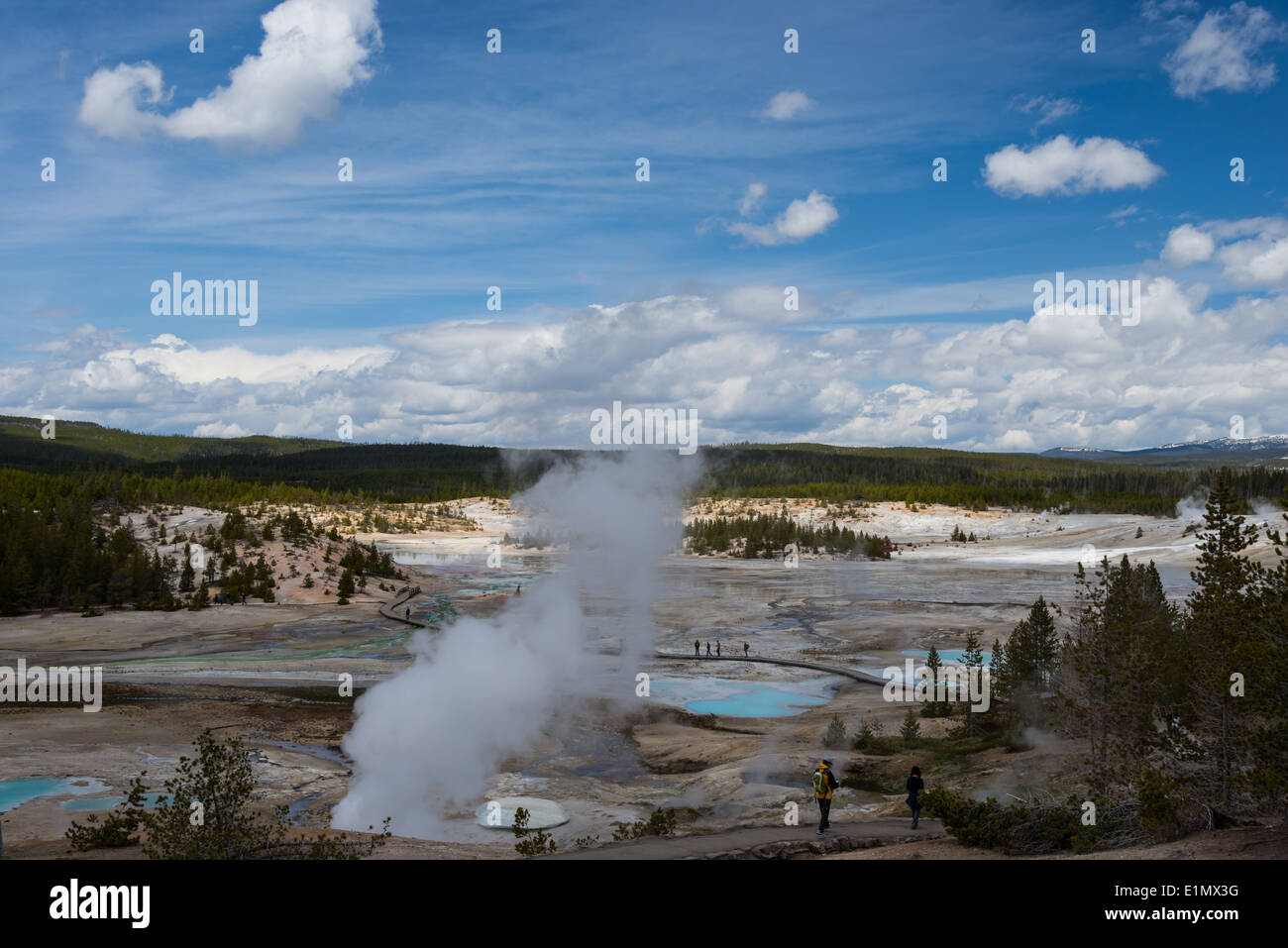 Steam from a fumarole at the Norris Geyser Basin. Yellowstone National Park, Wyoming, USA. - Stock Image