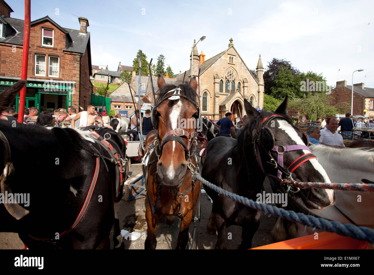 Appleby-in-Westmorland, Cumbria, England - June 06, 2014: Horses tethered in the street during the Appleby Horse Stock Photo