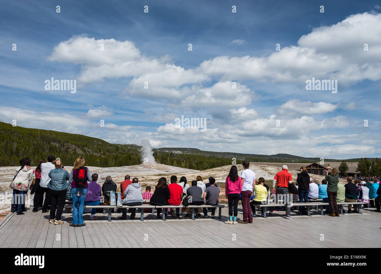 Visitors gather in front of the Old Faithful Geyser for its eruption. Yellowstone National Park, Wyoming, USA. - Stock Image