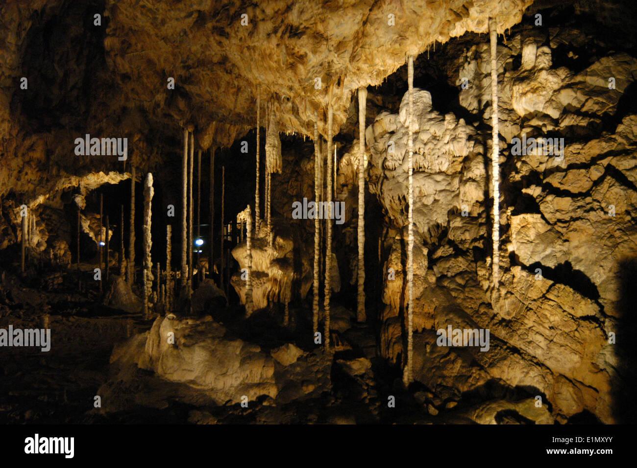 The Bamboo Wood in the Catherine's Cave (Katerinska Cave) in the Moravian Karst (Moravsky Kras) Area near Brno, Czech Republic.  - Stock Image