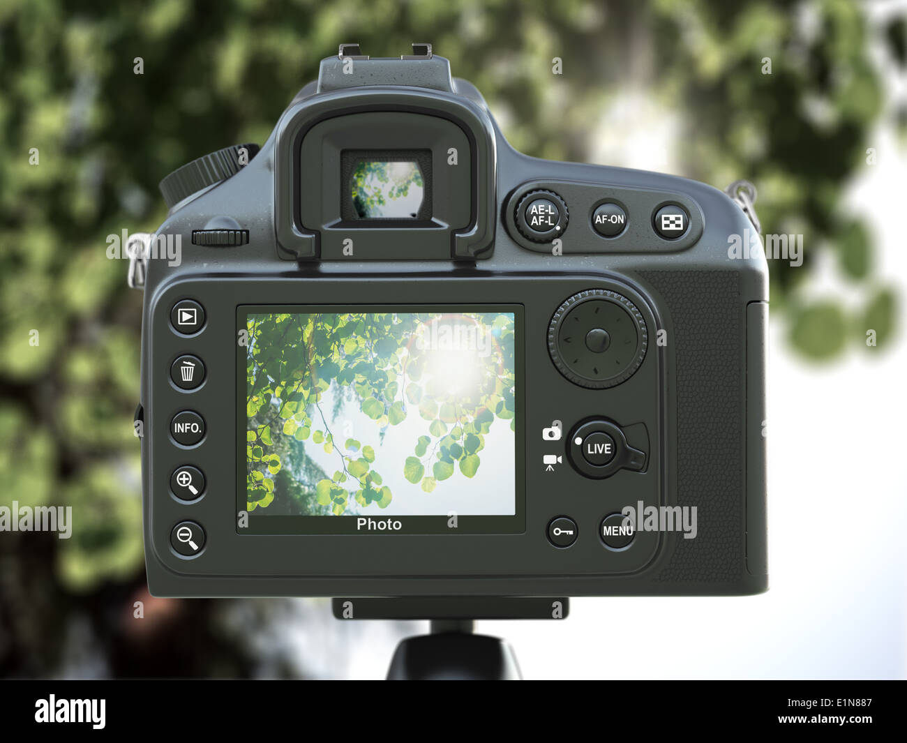 Taking photos. Camera and nature. 3d image. - Stock Image