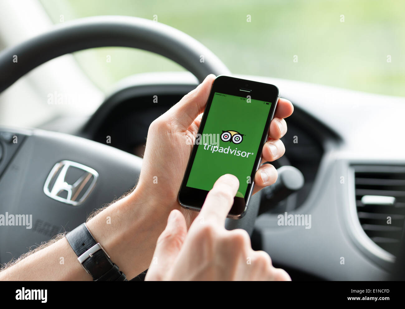 Man in a car planning a trip using Tripadvisor app on Apple iPhone 5S - Stock Image