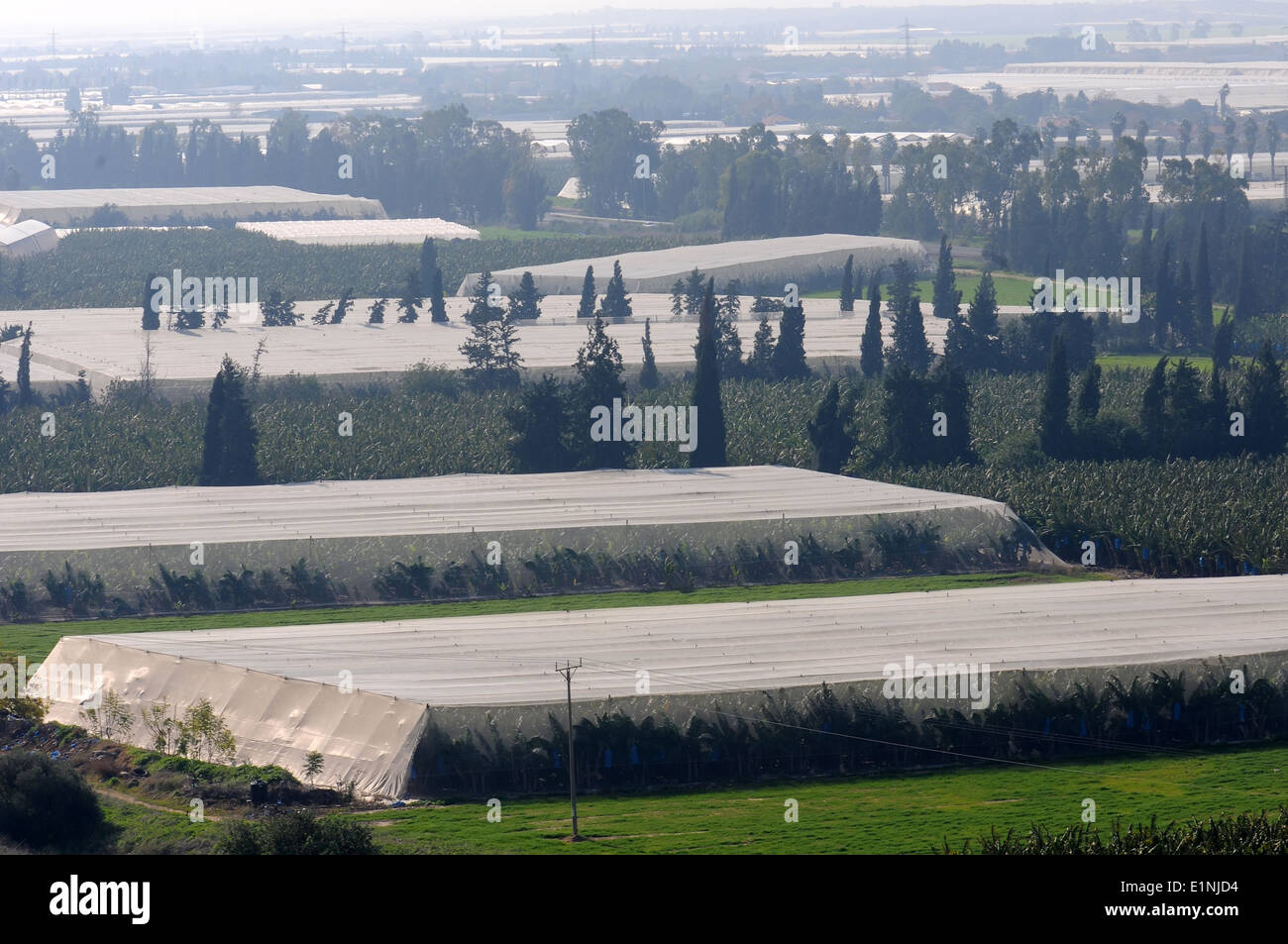 Greenhouses on agricultural land, Israel - Stock Image