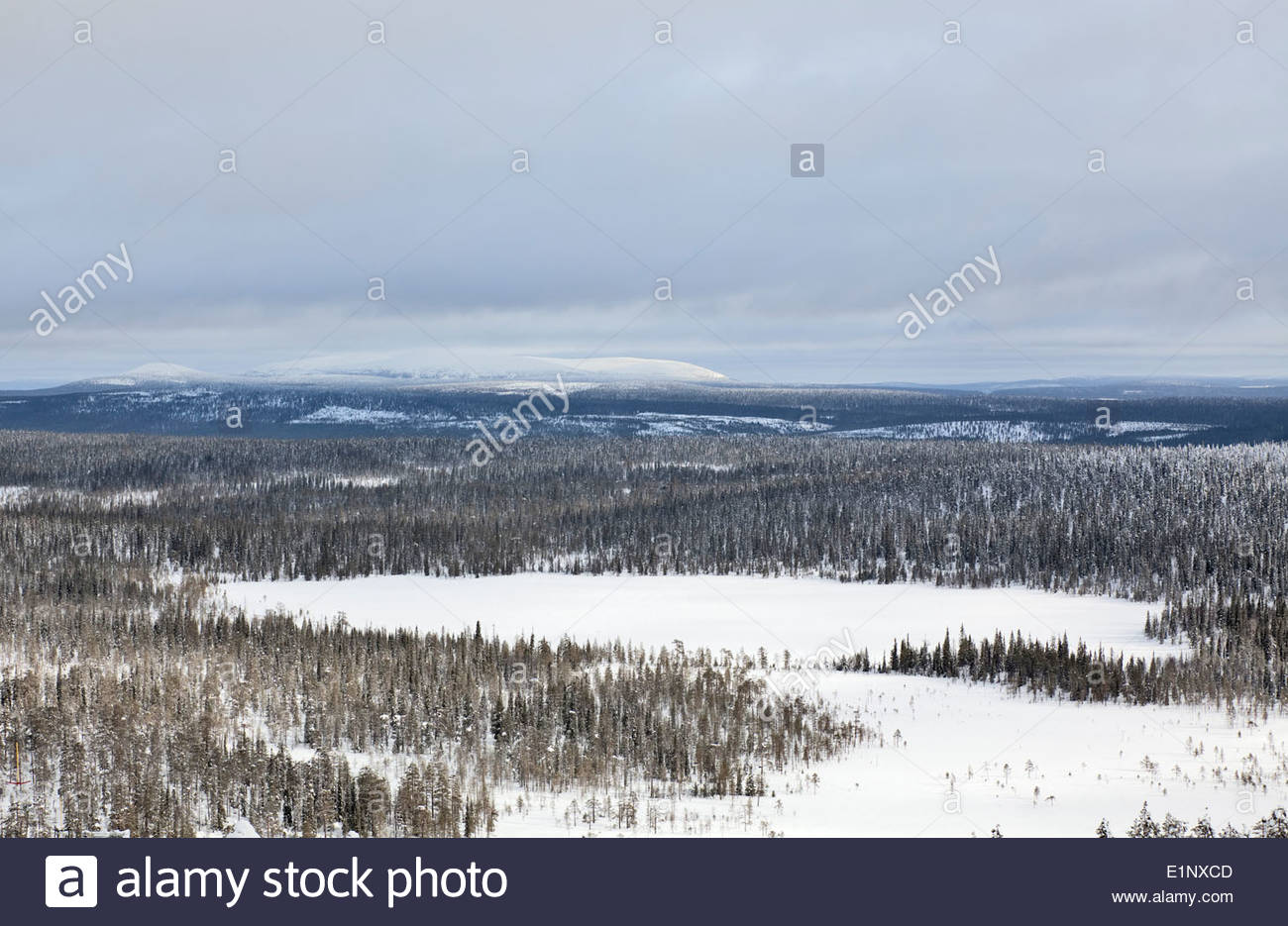 Salla fell in Russia Stock Photo