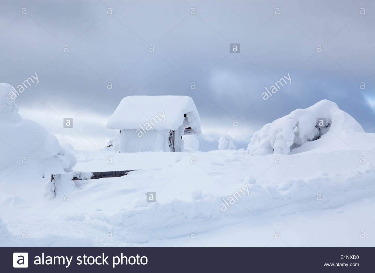 Heavy snow on trees and cottage Stock Photo
