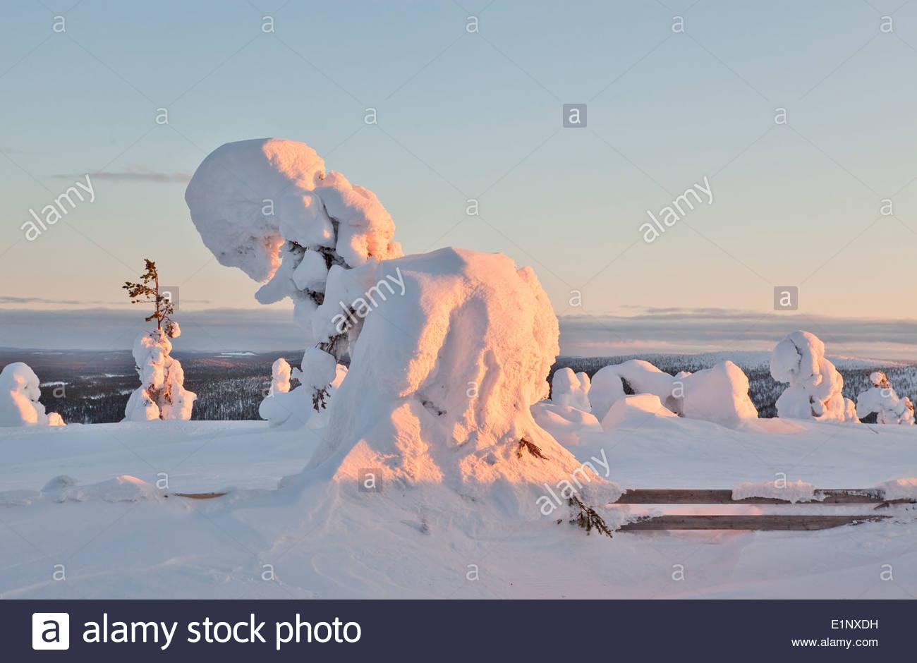 Heavy snow on the Salla fell Stock Photo