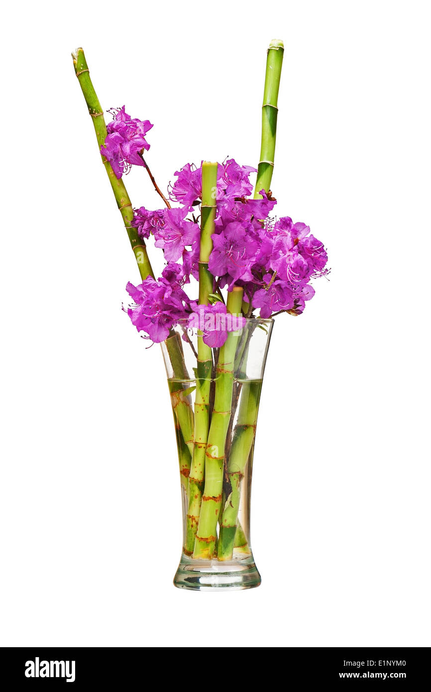 Bamboo Floral Arrangement High Resolution Stock Photography And Images Alamy