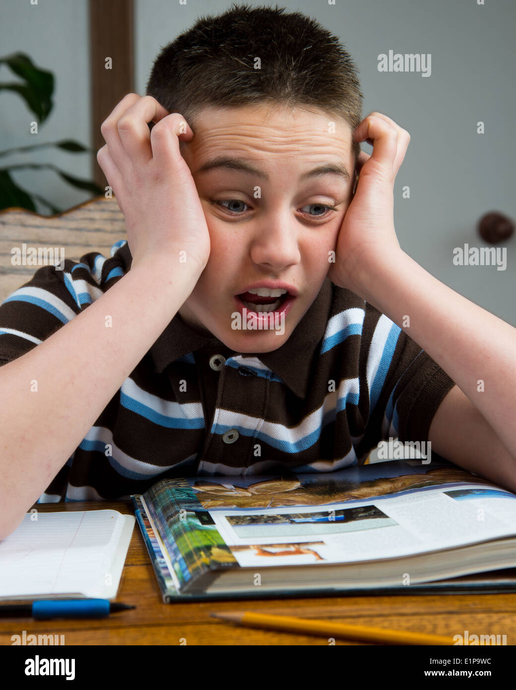 A young teen stressed out over his homework. - Stock Image