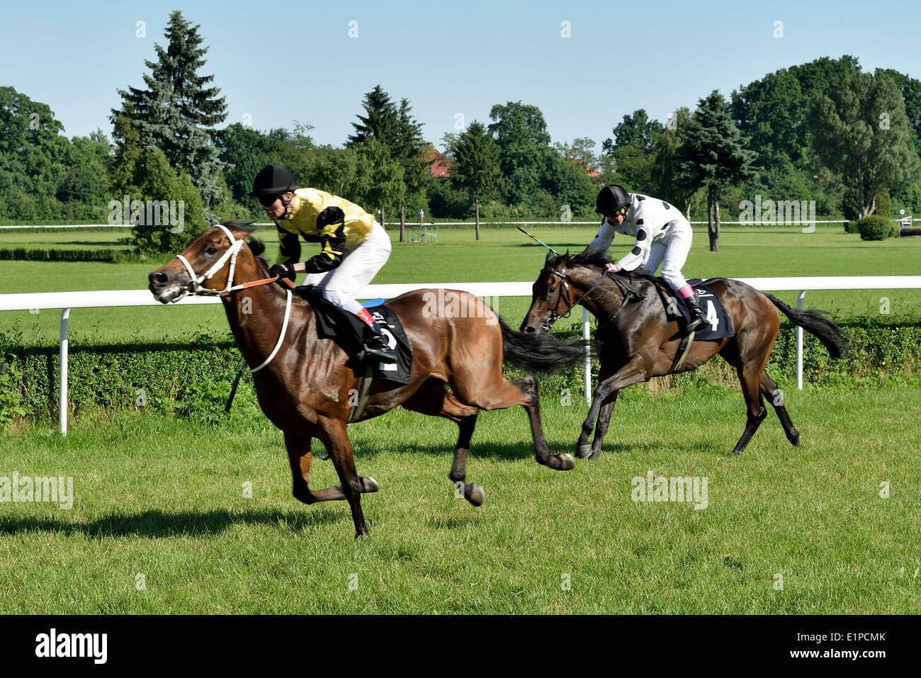 Wroclaw, Poland. 08th June, 2014. Horse race for the prize of the President of the City of Wroclaw on Juni 8, 2014. Race wins horse Silvaner with the number 7, son of the legendary horse Lomitas. - Stock Image