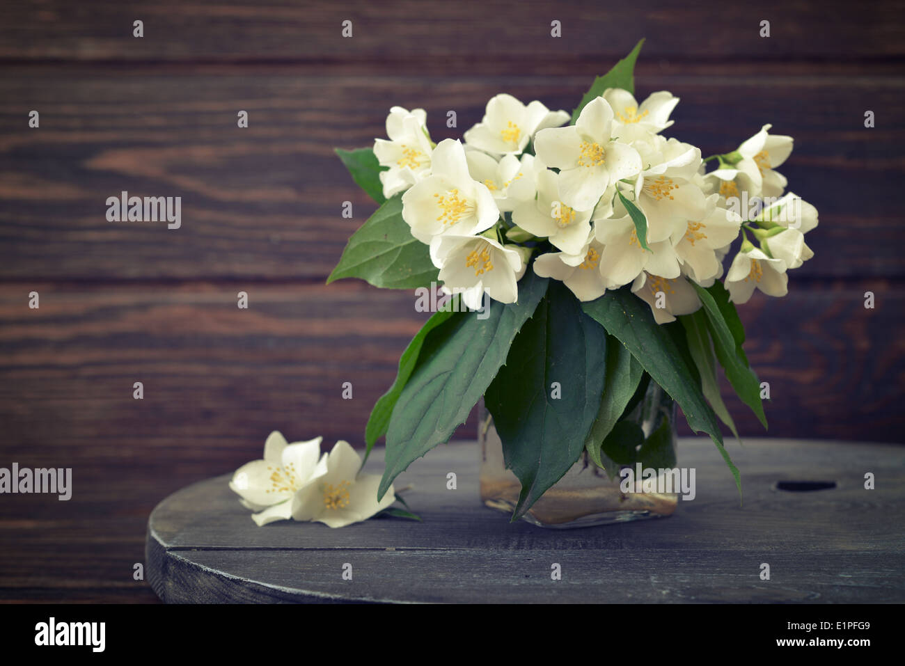 Bouquet of jasmine flowers on wooden background Stock Photo ...